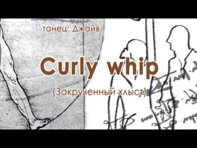 024 Curly whip Закрученный хлыст