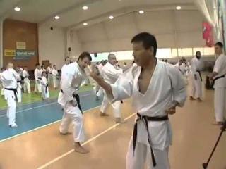 Семинар Микио Яхары в России, часть 2 (Seminar Mikio Yahara 2009)