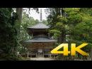 Danjo Garan Koyasan - Wakayama - 壇上伽藍 - 4K Ultra HD