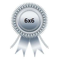 Серебряная медаль Чемпионата 6х6