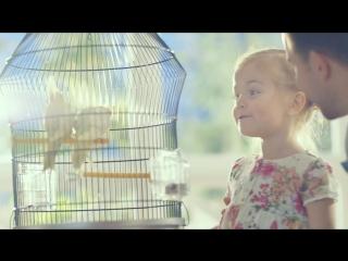 Цыплята. Творожок и йогурт Агуша со злаками. ТВ-ролик, 2014 год