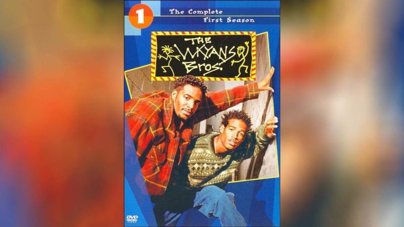 Братья Уэйэнсы (1995