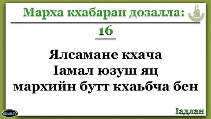 16 Марх кхабаран дозалла Ялсамане кхача lамал юзуш яц мархийн бутт кхаьбча бен