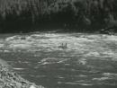 Дорога к морю (1965)