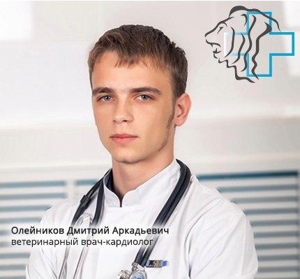 Олейников Д.А.