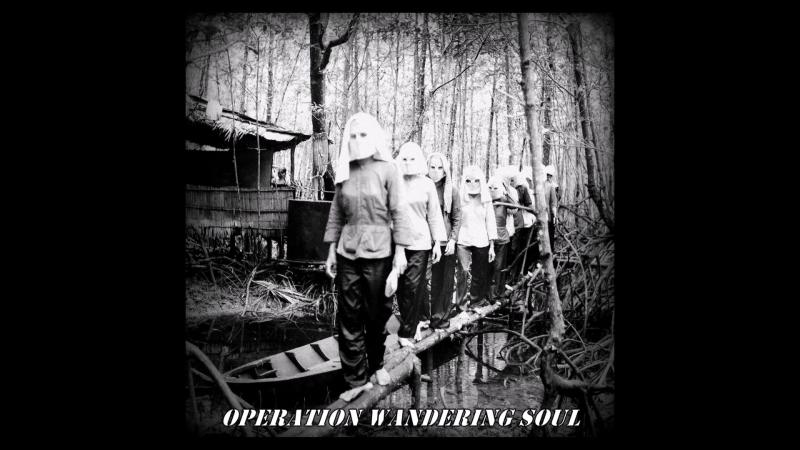 H.ø.s.t-Operation Wandering Soul
