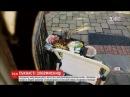 В американському містечку Мейплвуд білка перегризла дроти на святковій ялинці