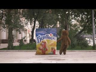 Bear on street
