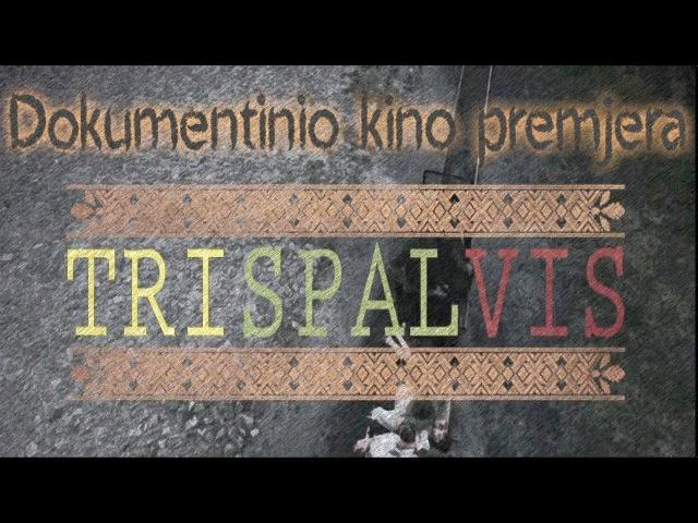 """Vytauto dokumentinis filmas """"Trispalvis"""
