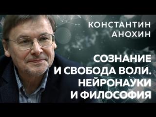 Константин Анохин о сознании, свободе воли, науках о мозге и философии