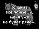 Евгений Андреев фото №4
