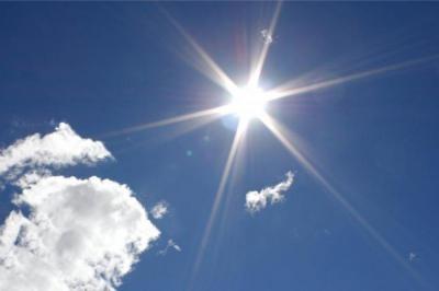 Котята, все выходим греться, ведь солнышко сегодня так припекает!