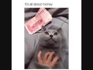 Деньги решают всё!