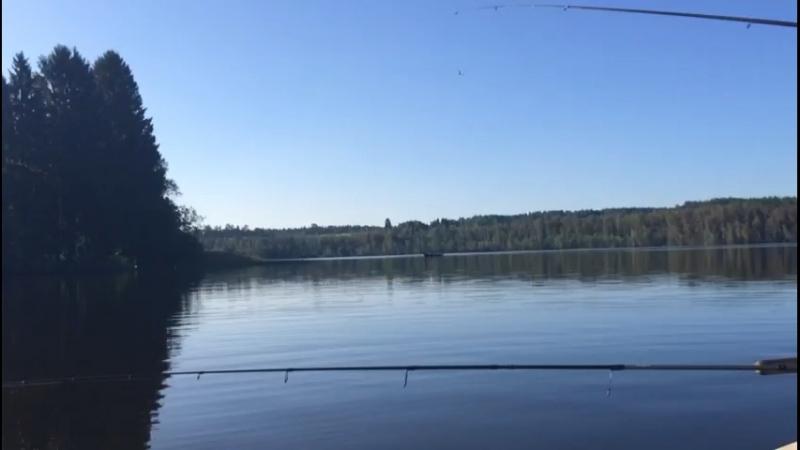Мичуринское озеро зимняя рыбалка