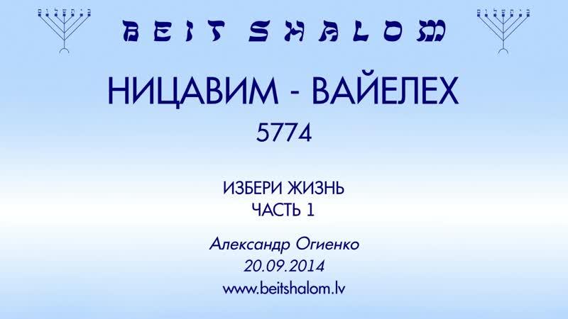 НИЦАВИМ ВАЙЕЛЕХ 5774 часть 1 ИЗБЕРИ ЖИЗНЬ А Огиенко 20 09 2014
