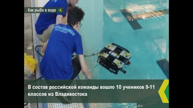 Робот «Матрешка», сделанный владивостокскими школьниками, взял 2 место в США