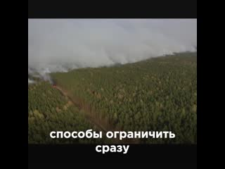 Почему горят леса в Сибири - объясняет Артемий Лебедев