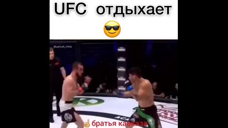 UFC отдыхает