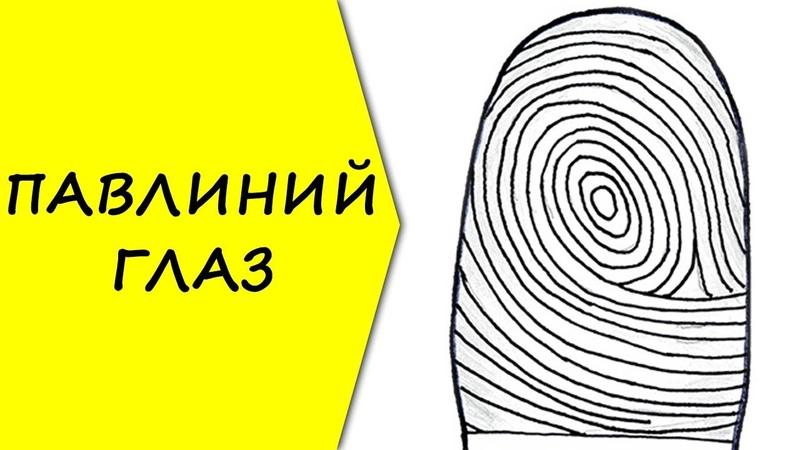 ПАВЛИНИЙ ГЛАЗ / отпечатки пальцев / хиромантия / Кладезь Хиромантии