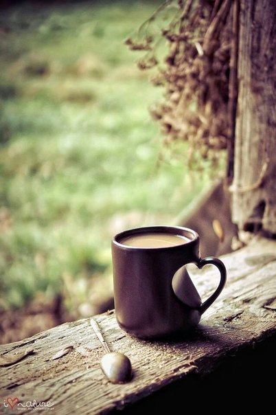 Выходные дни бесценны тем, что можно замедлиться, можно дать внимание тому, на что не хватало времени в ритме повседневного дня