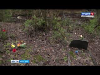 """На территории парка """"Зелёный берег"""" обнаружено кладбище домашних животных 2019 Карелия Петрозаводск"""