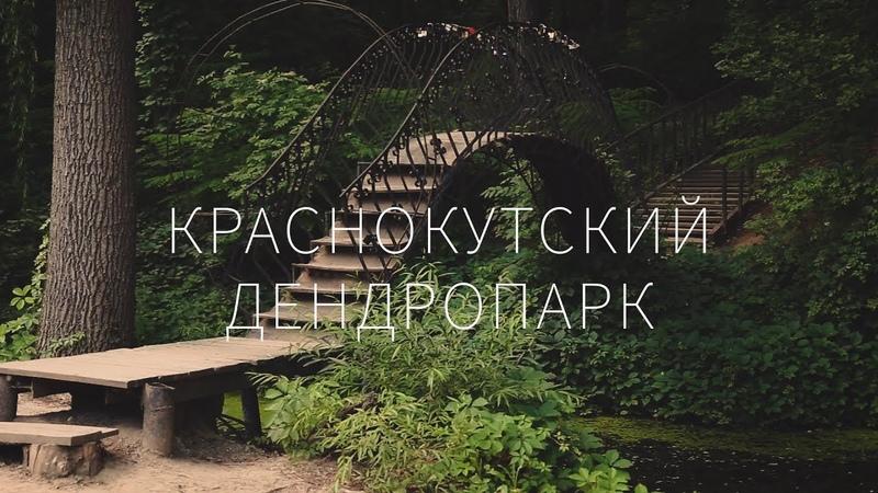 МОЁ Краснокутский дендропарк