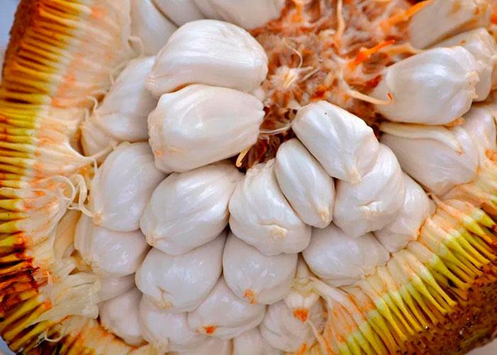 Экзотические фрукты, изображение №2