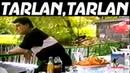 Tatul Avoyan - Tarlan,tarlan
