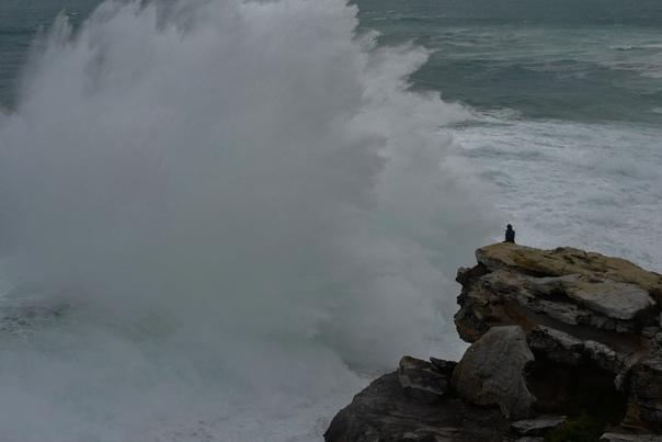 Мужчина наблюдает, как волны разбиваются о скалы в пригороде Сиднея, Австралия