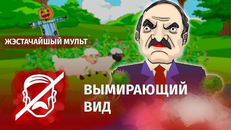 Лукашенко: Я последний в Европе! Меня спасать надо!