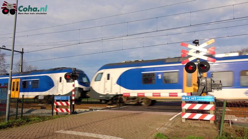 Spoorwegovergang Dorst (NB) 😍4K😍 Dutch Railroad crossing