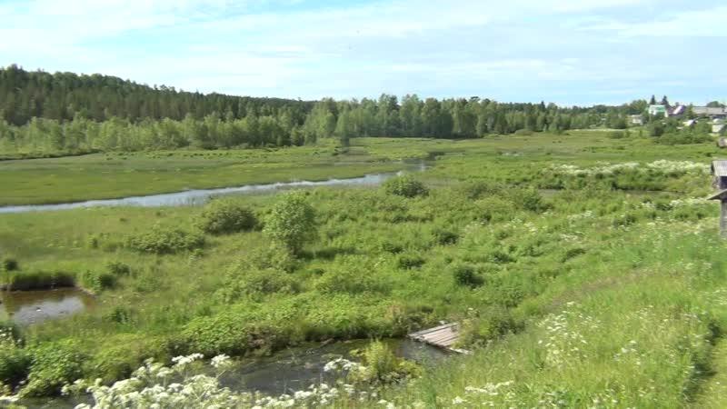 Дер. Шестово. Вид с деревни на речку.