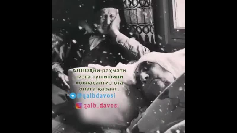 Fozil_qori_sobirovBxQdcgdg-D1