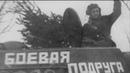 Медаль Золотая Звезда бессмертные подвиги героев Великой Отечественной Войны
