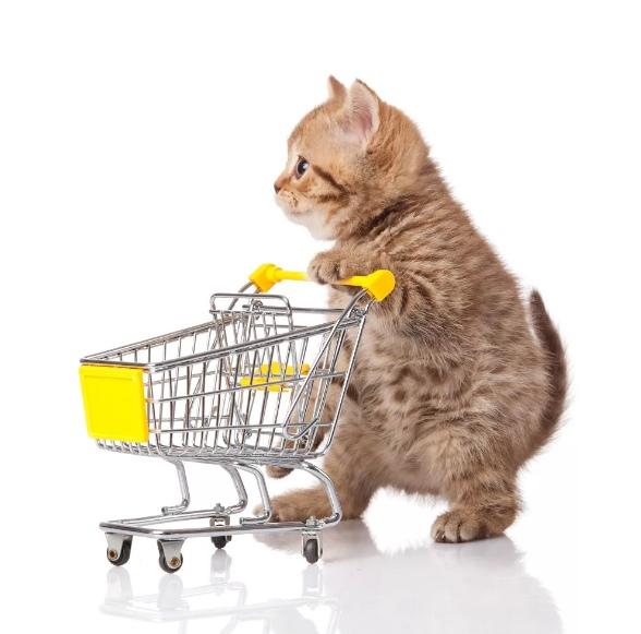 Картинки с товаром для животных