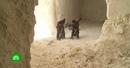 Монахи и верующие в Сирии восстанавливают древнюю христианскую обитель