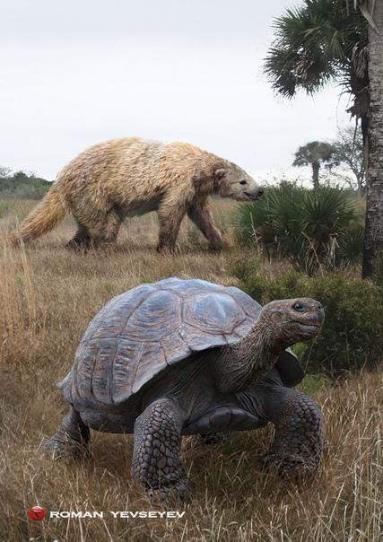 giant animals north america - 531×747