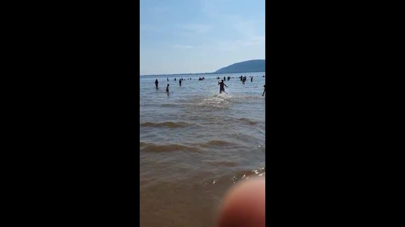 VIDEO 2020 07 05 16 13