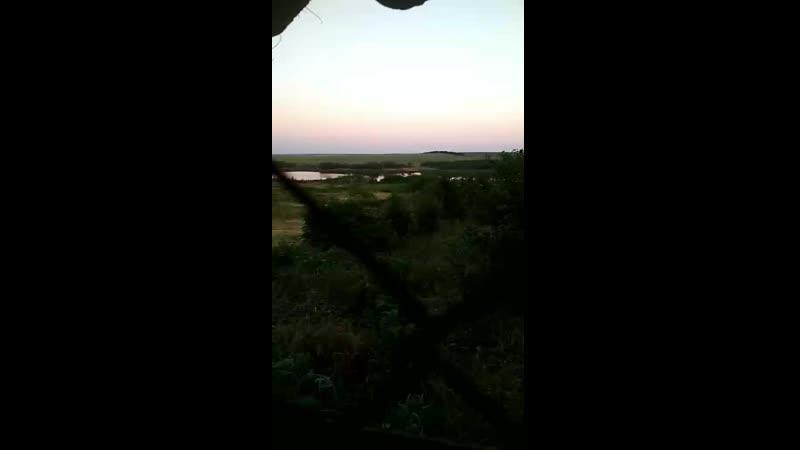 Вечерняя Пиздюлина кацапам.mp4