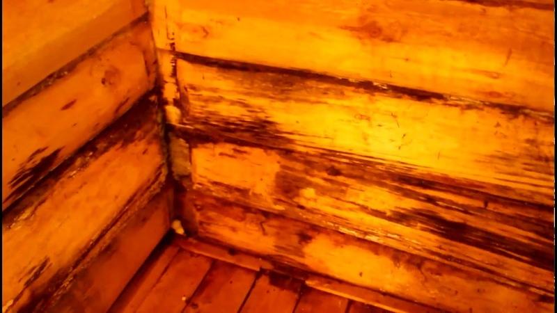 Как строят бани почти все строители? Почему гниют бани?