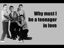 Dion The Belmonts - Teenager In Love (Lyrics)