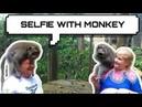 TEMPAT WISATA BISA SELFI DENGAN MONYET (TOURISM SPORT CAN SELFIE WITH MONKEY)
