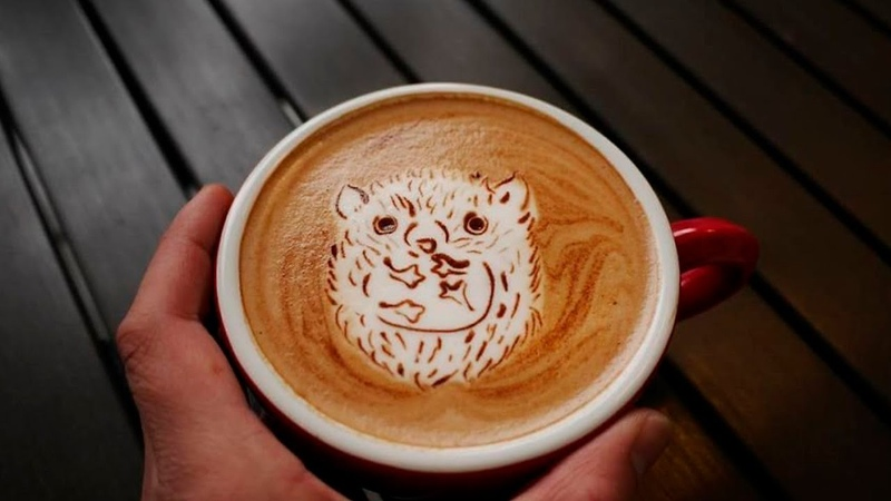 Мастерство бариста О том как готовится кофе и кофейные напитки