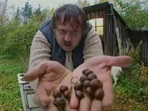 Модест любит козьи шарики