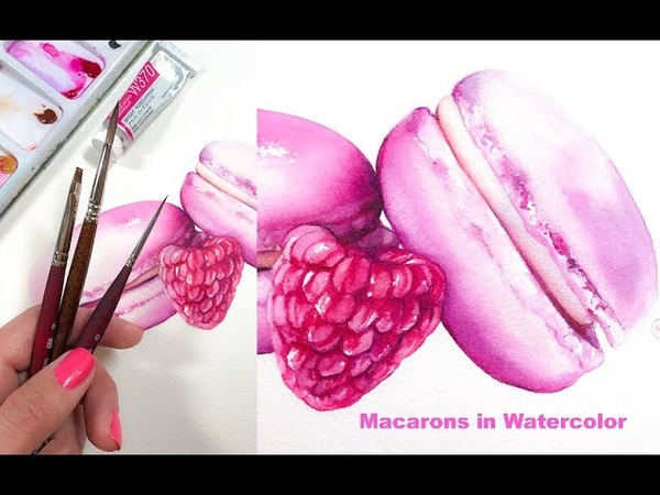 Macaron and Raspberry Painting in Watercolor Desserts