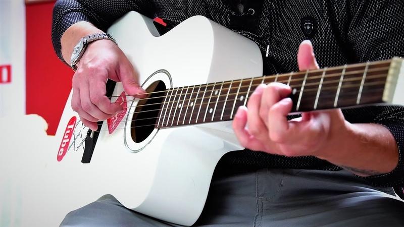Александр Кочетков Баллада о Прокуренном Вагоне Guitar cover by MAX ARINA