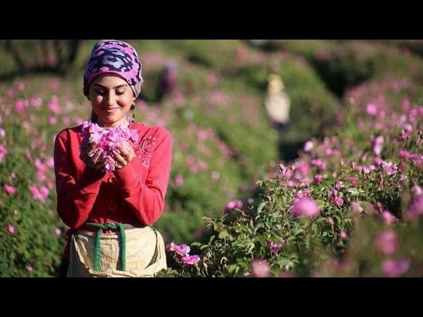 ISPARTA tanıtım filmi