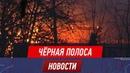 Грибников подозревают в уничтожении 30 домов и 200 гектаров степи и леса