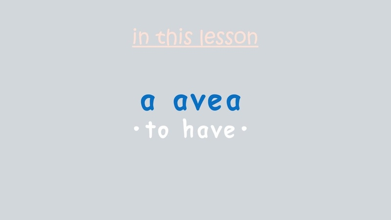 Essential Romanian Verbs a avea (to have)
