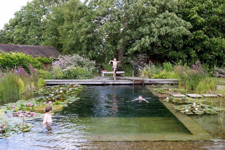 The chemical-free pool, designed by Sarah Murch.
